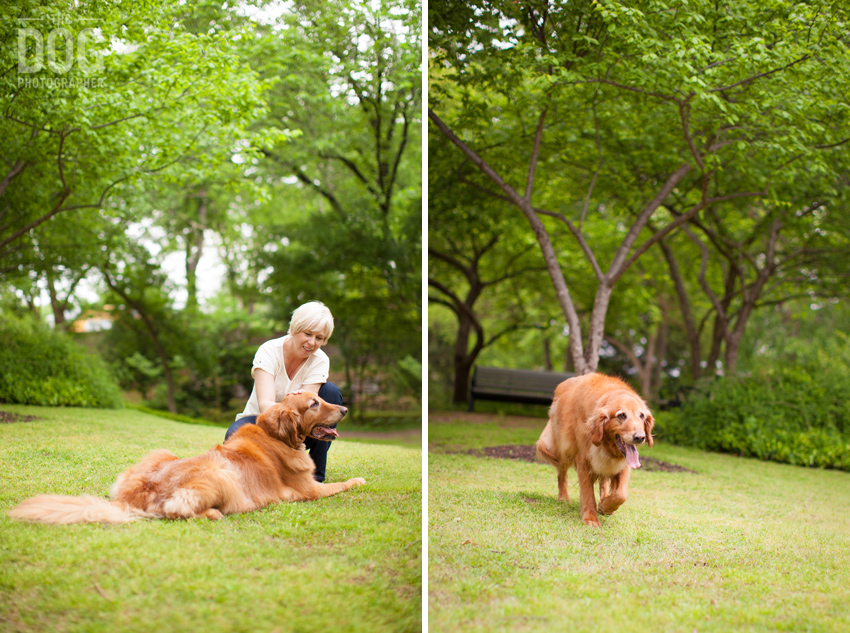 Ben | Grapevine Botanic Gardens >> Pet portraits by the Dog ...