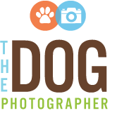 Pet portraits by the Dog Photographer | Dallas pet photography logo